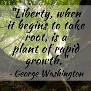 Liberty when it begins to take root